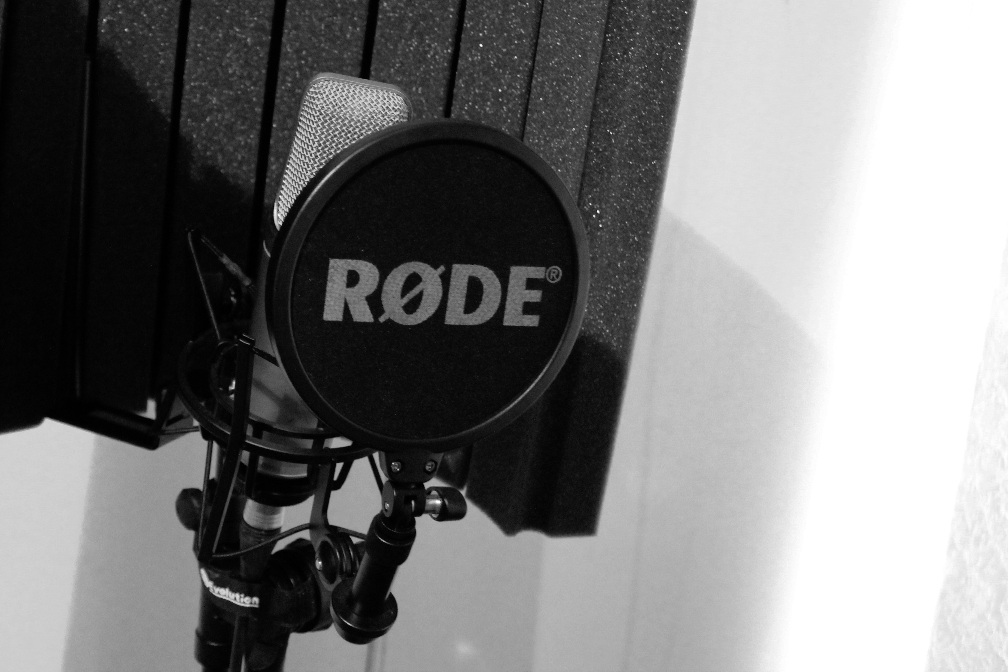 nylon mesh pop filter infront of a microphone