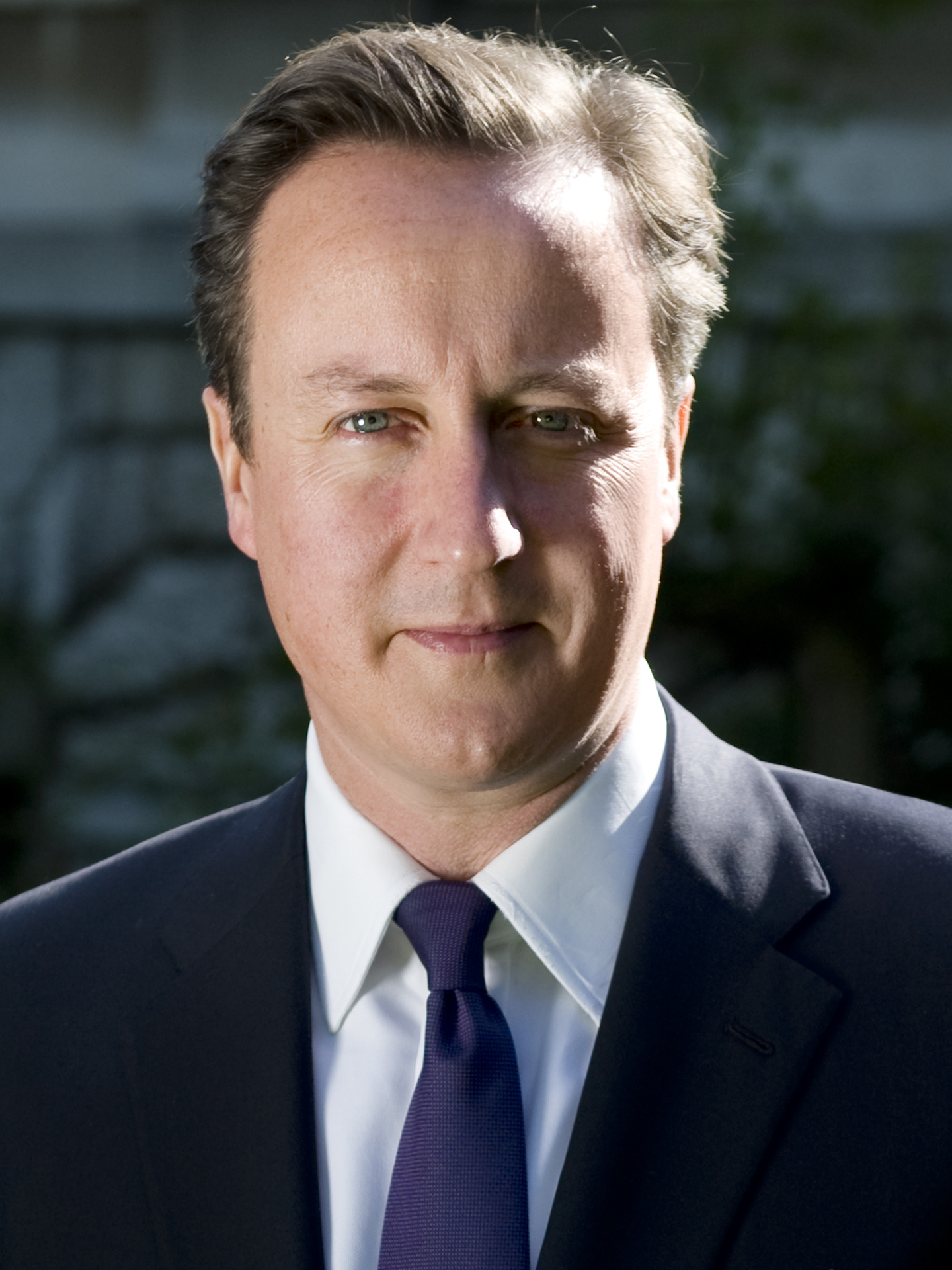 David Cameron's official portrait from the 10 Downing Street website