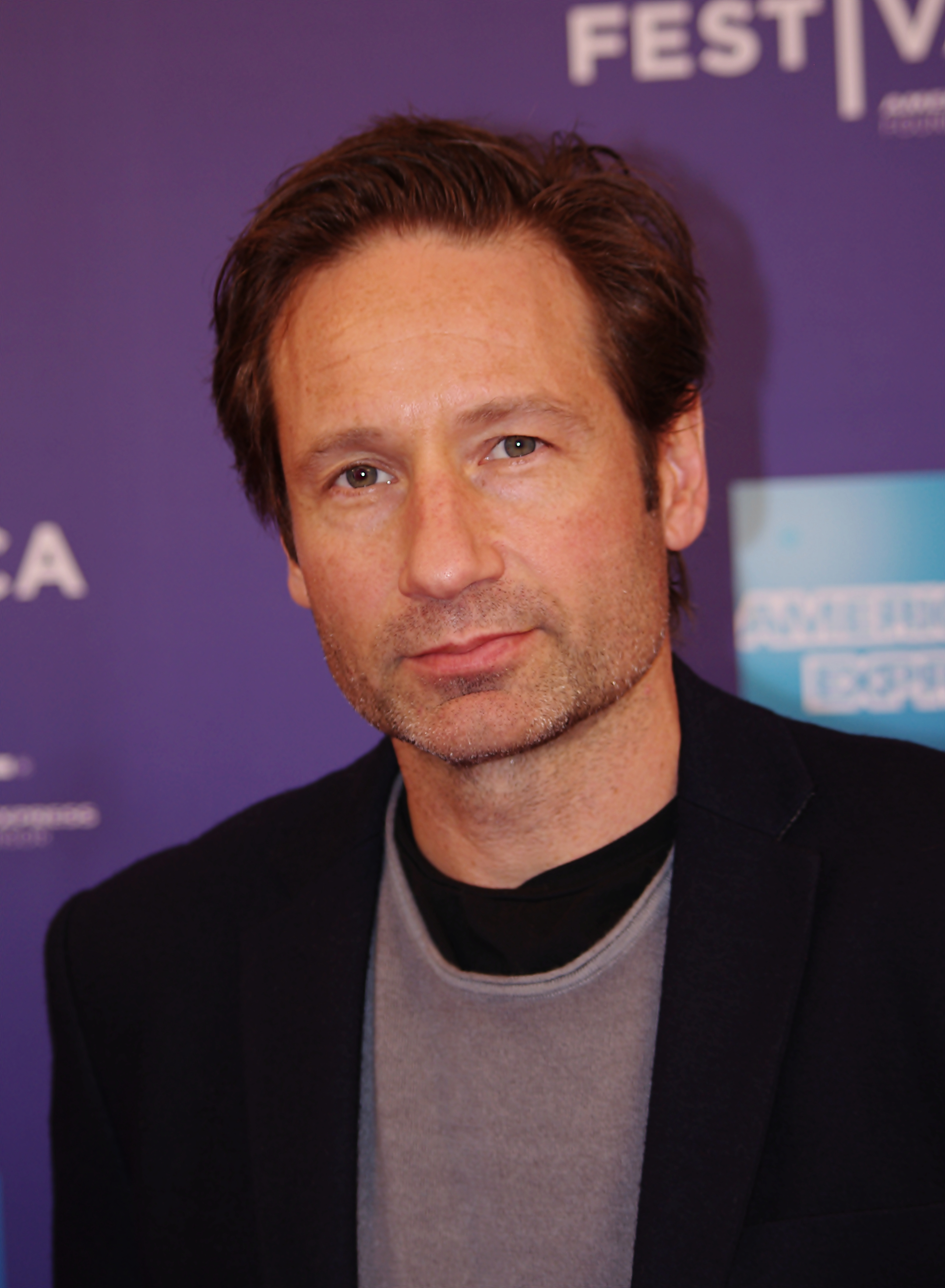 David Duchovny earned a  million dollar salary - leaving the net worth at 60 million in 2018