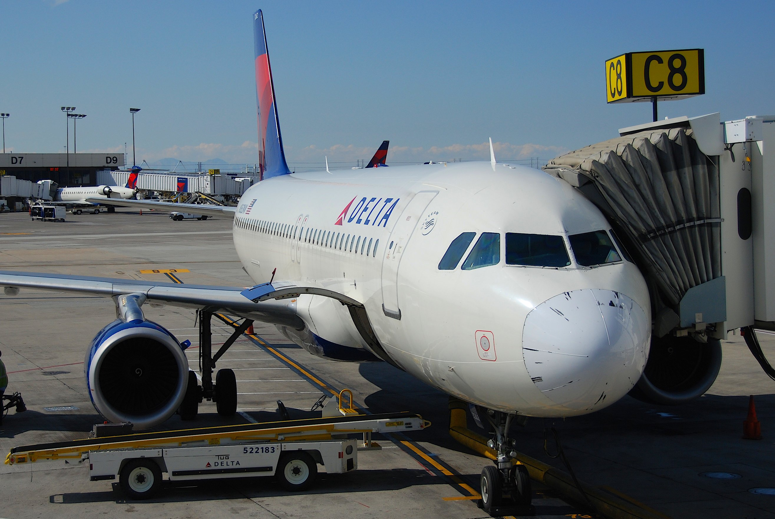 Does My Delta Skymiles Cover International Travel Insurance