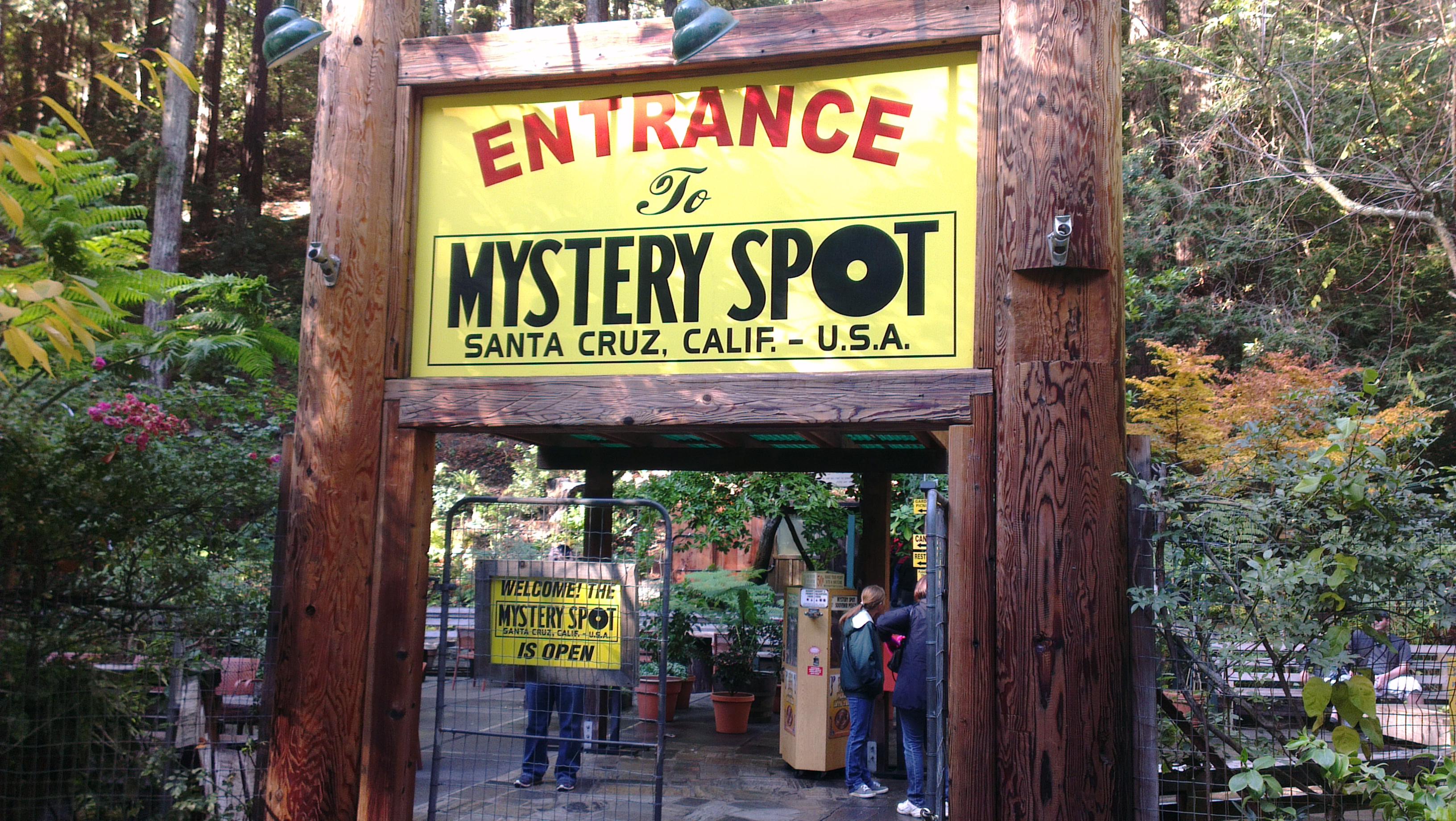 Santa Cruz Mystery Spot Dog Friendly