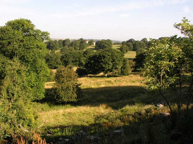 Hardwick Hall Country Park - geograph.org.uk - 11157
