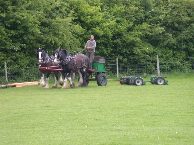 File:Heavy-duty lawn-mowing - geograph.org.uk - 815284.jpg ...