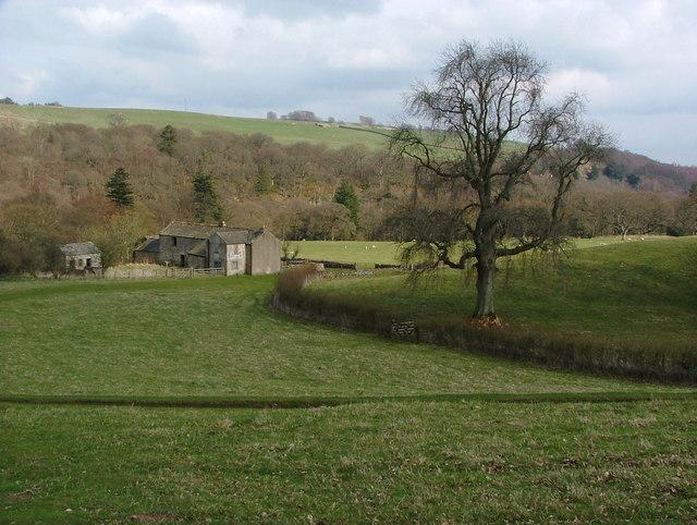 Low Garth Farm, Romaldkirk, Teesdale - geograph.org.uk - 1476538