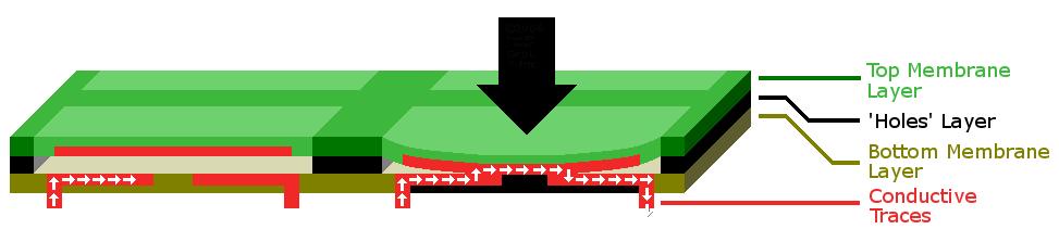 膜鍵盤橫截面。為表示清楚,對下三層厚度進行了誇大。