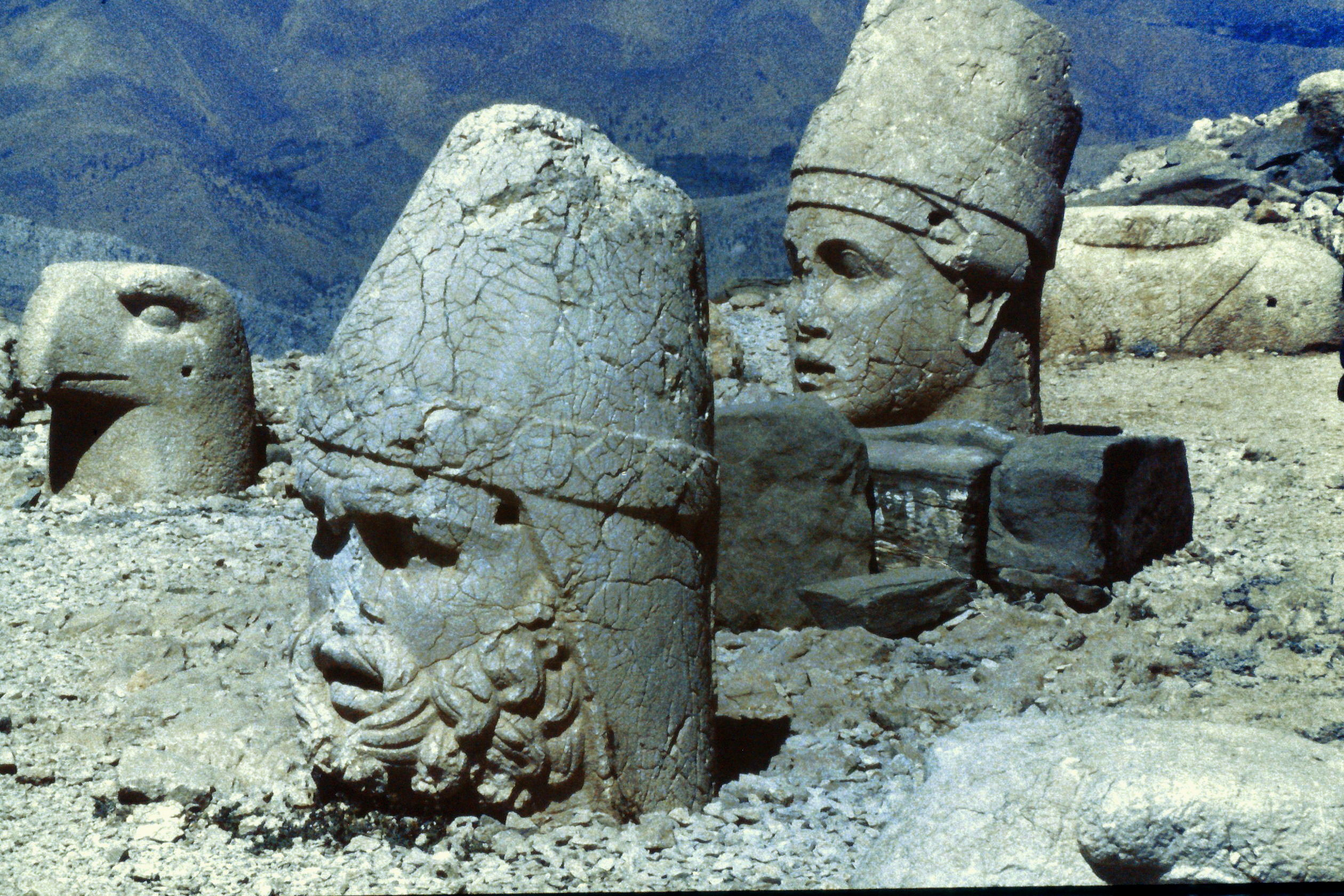 Image result for images of nemrud heads