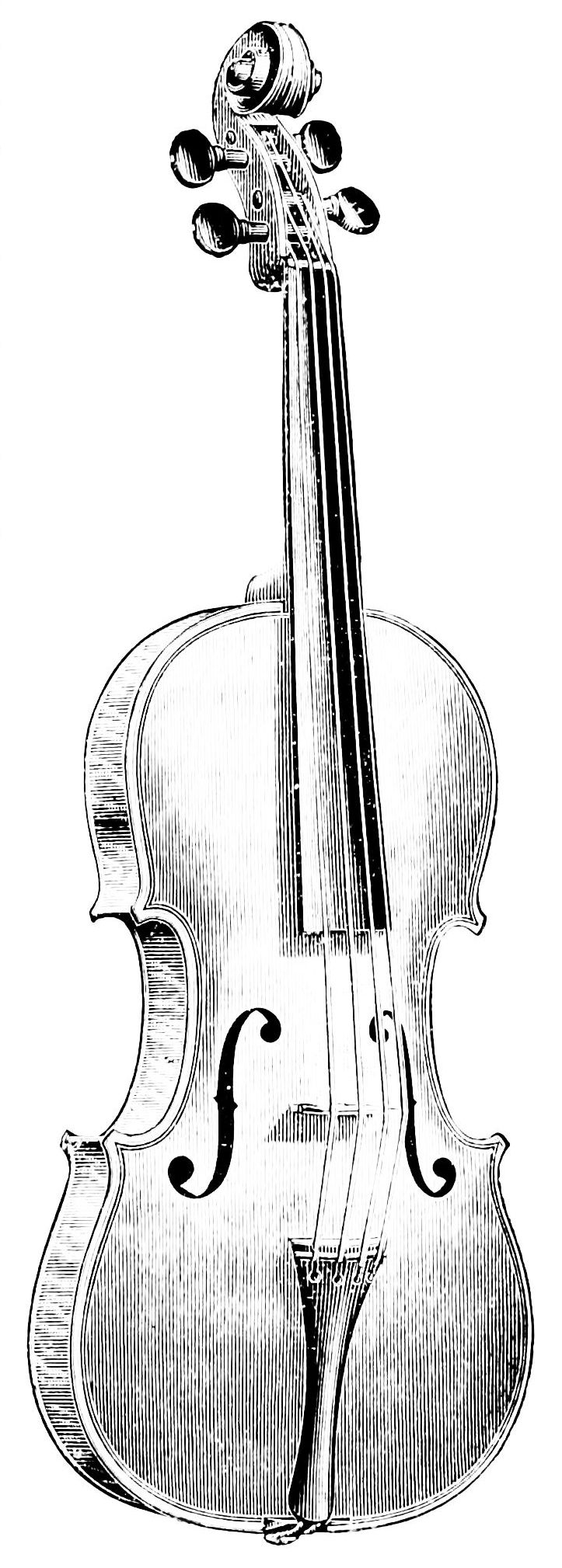 PSM V40 D817 Amati model violin.jpg