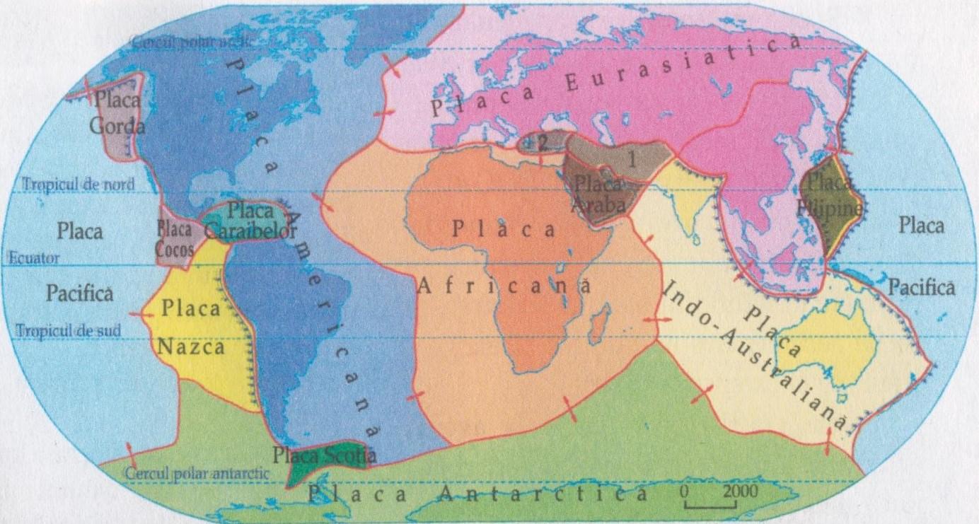 Placă Tectonică Wikipedia