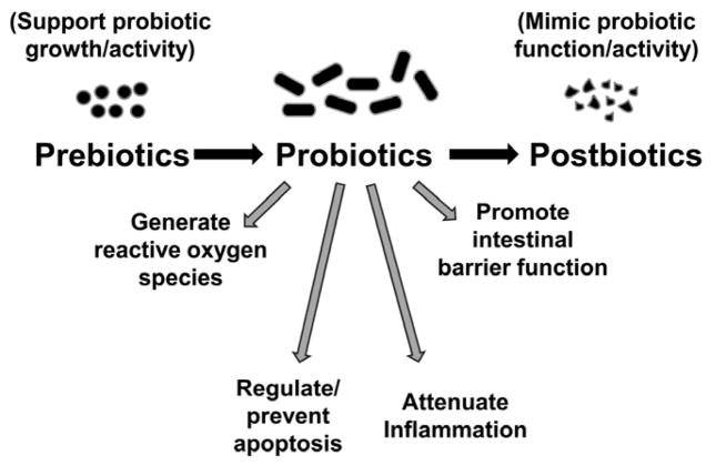 Pre-, pro- and postbiotics