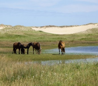 Sable Island National Park Act