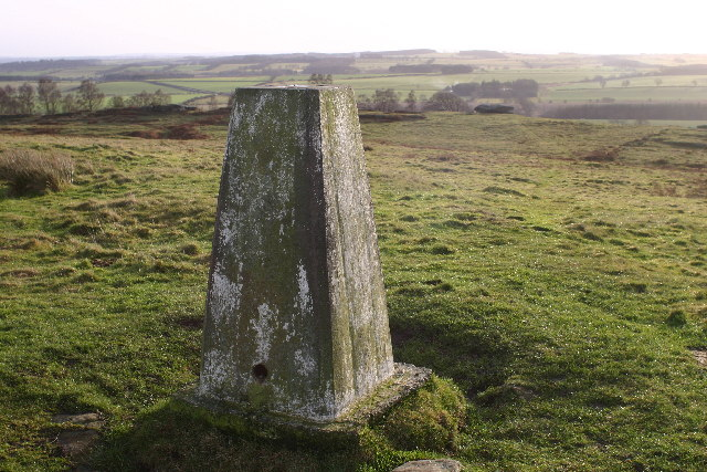 Shaftoe Crags trig - geograph.org.uk - 100267