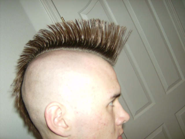 Mohawk hairstyle - Wikipedia