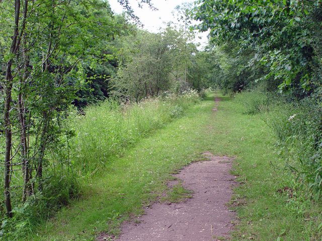 The towpath, Pocklington Canal - geograph.org.uk - 871861