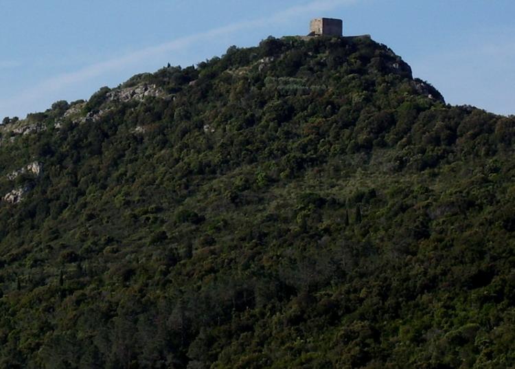 Torre Avvoltore, Monte Argentario