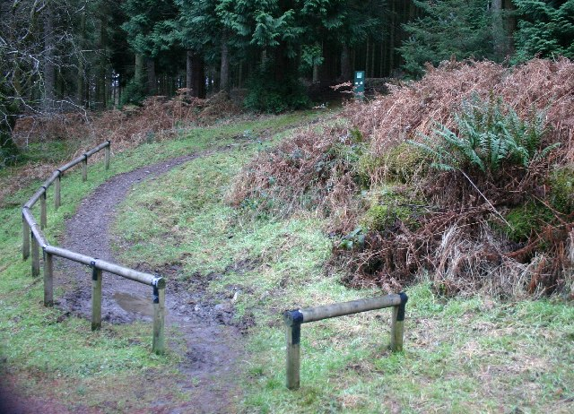 Waymarked cycle-walkers route, Winlatter - geograph.org.uk - 91218