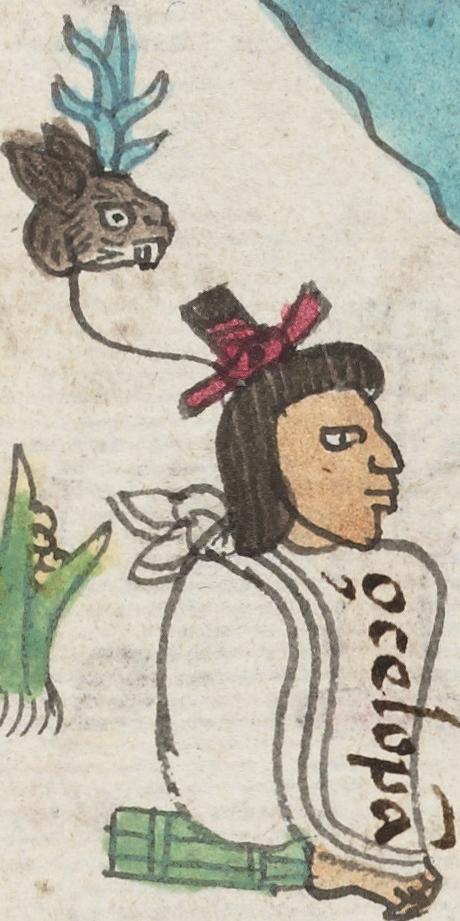Acacitli Aztec nobility