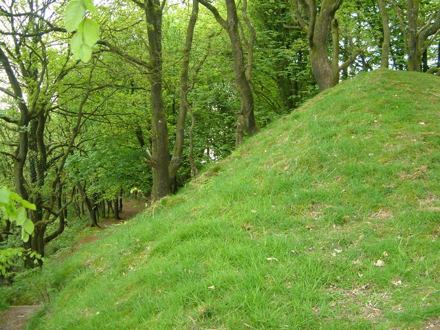 Bank at Castle Neroche - geograph.org.uk - 168660
