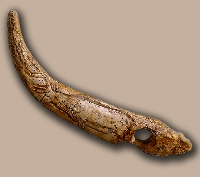 Bastón de mando perforado adornado con el grabado de un ciervo hallado en la Cueva de El Castillo.