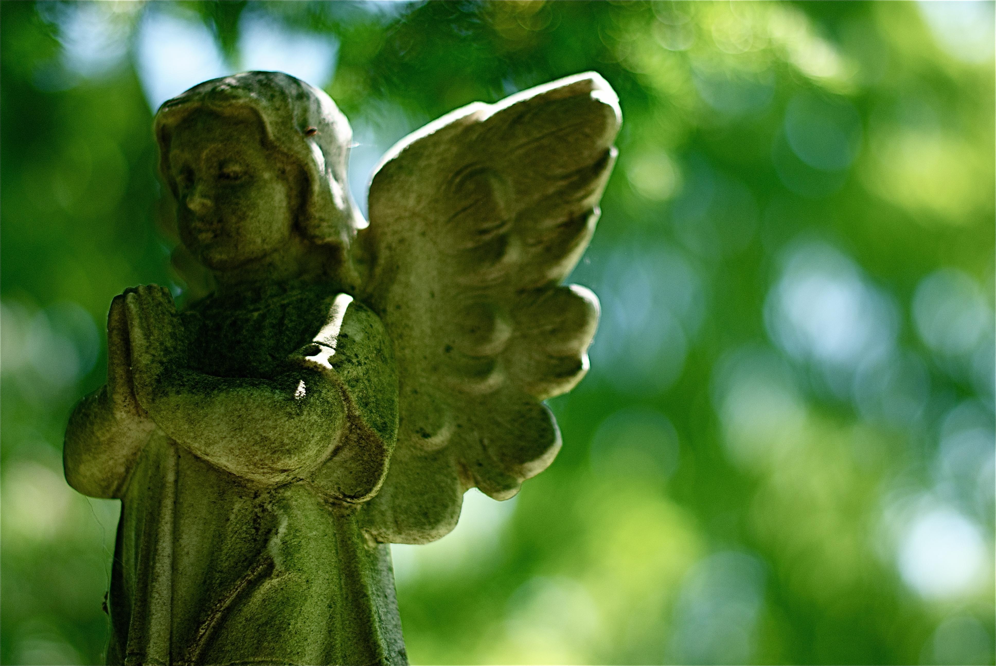 Beechwood_Cemetery_June_2011.jpg (3872×2592)