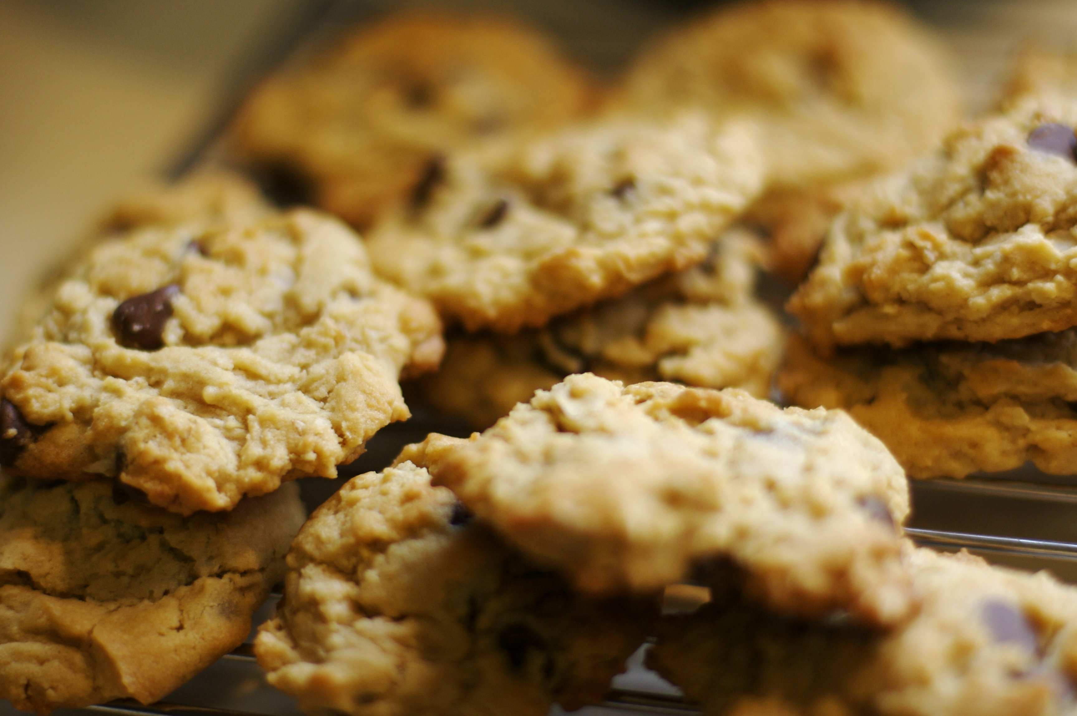 Chocolate Chip Cookie Wikipedia Commons