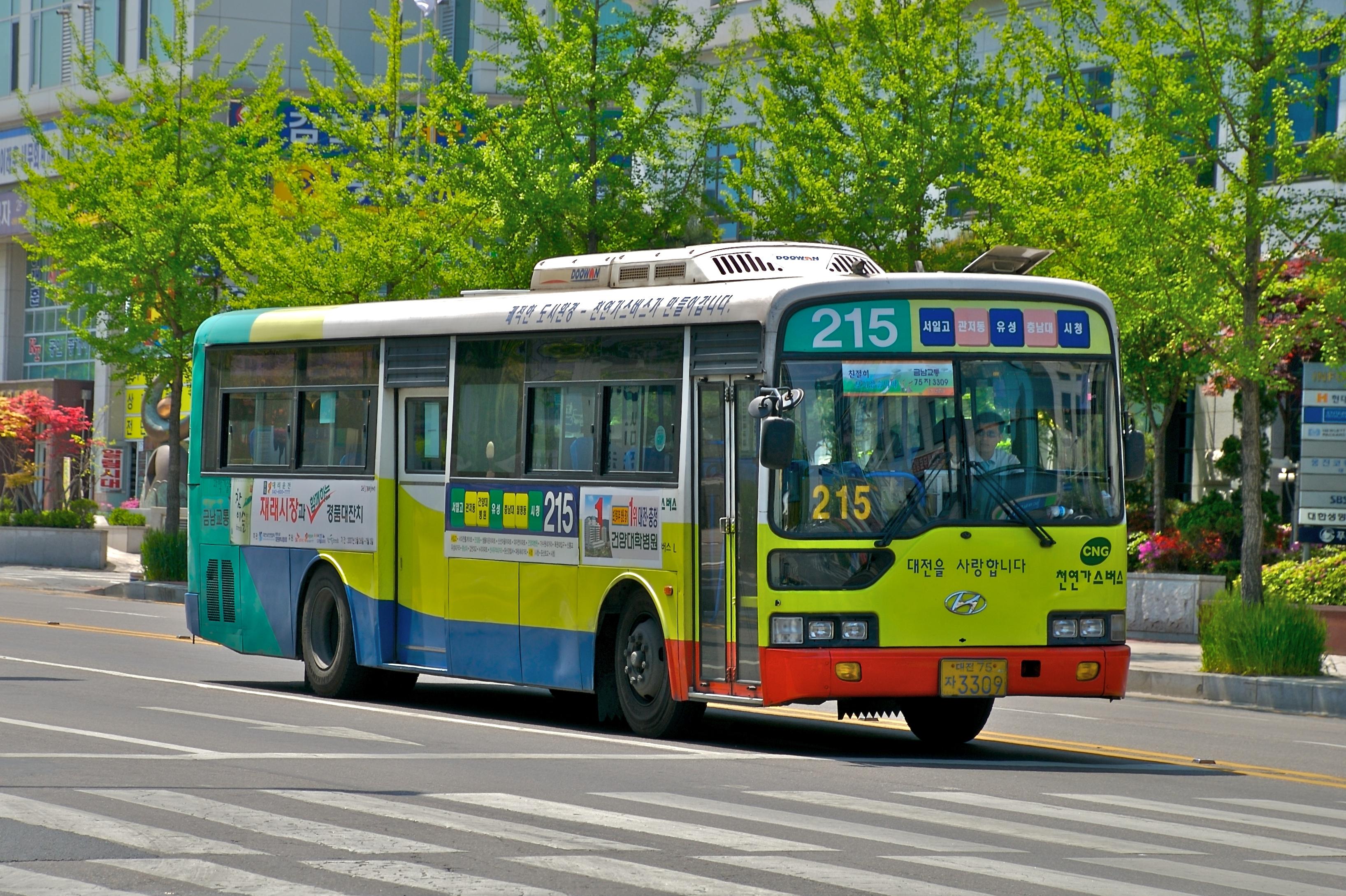 city bus how tall