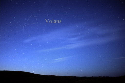 Constellation Volans.jpg