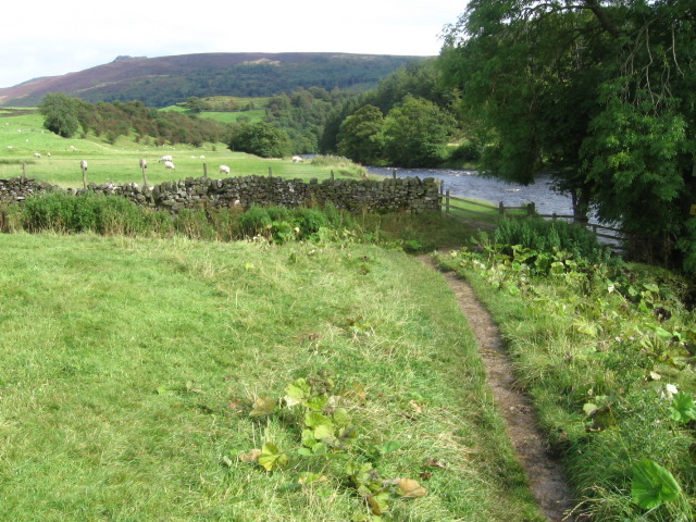 Dales Way by River Wharfe near Appletreewick - geograph.org.uk - 1474603