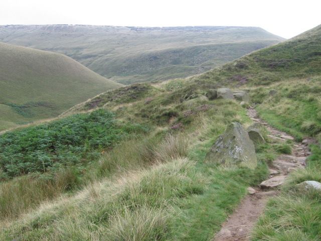 Doctor's Gate path towards Gathering Hill - geograph.org.uk - 944638