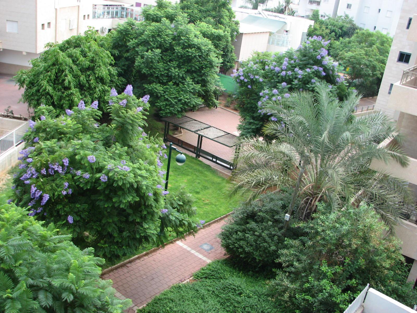Файл:Garden in Ramat Gan.jpg