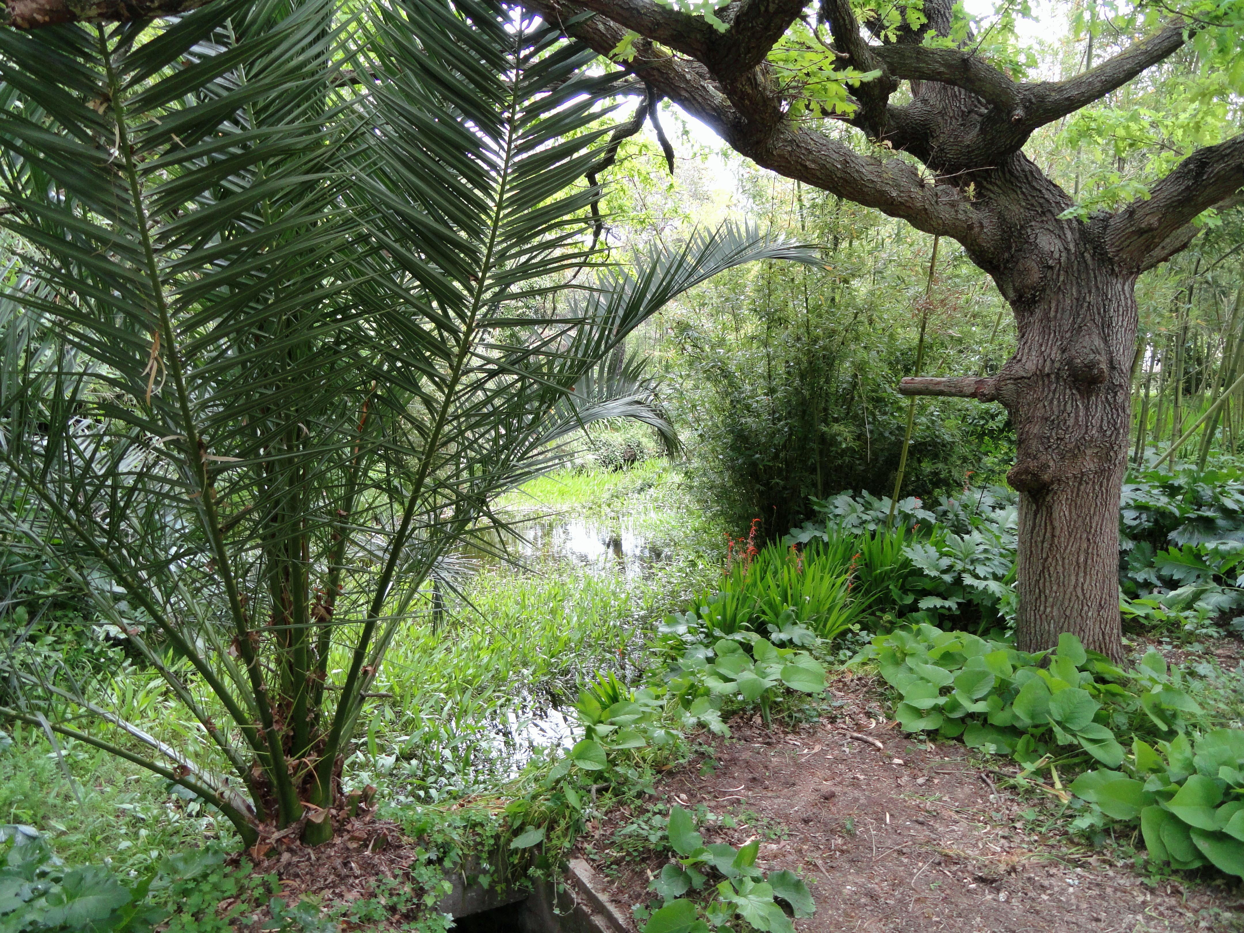 Jardin botanique de la Villa Thuret - Wikipedia