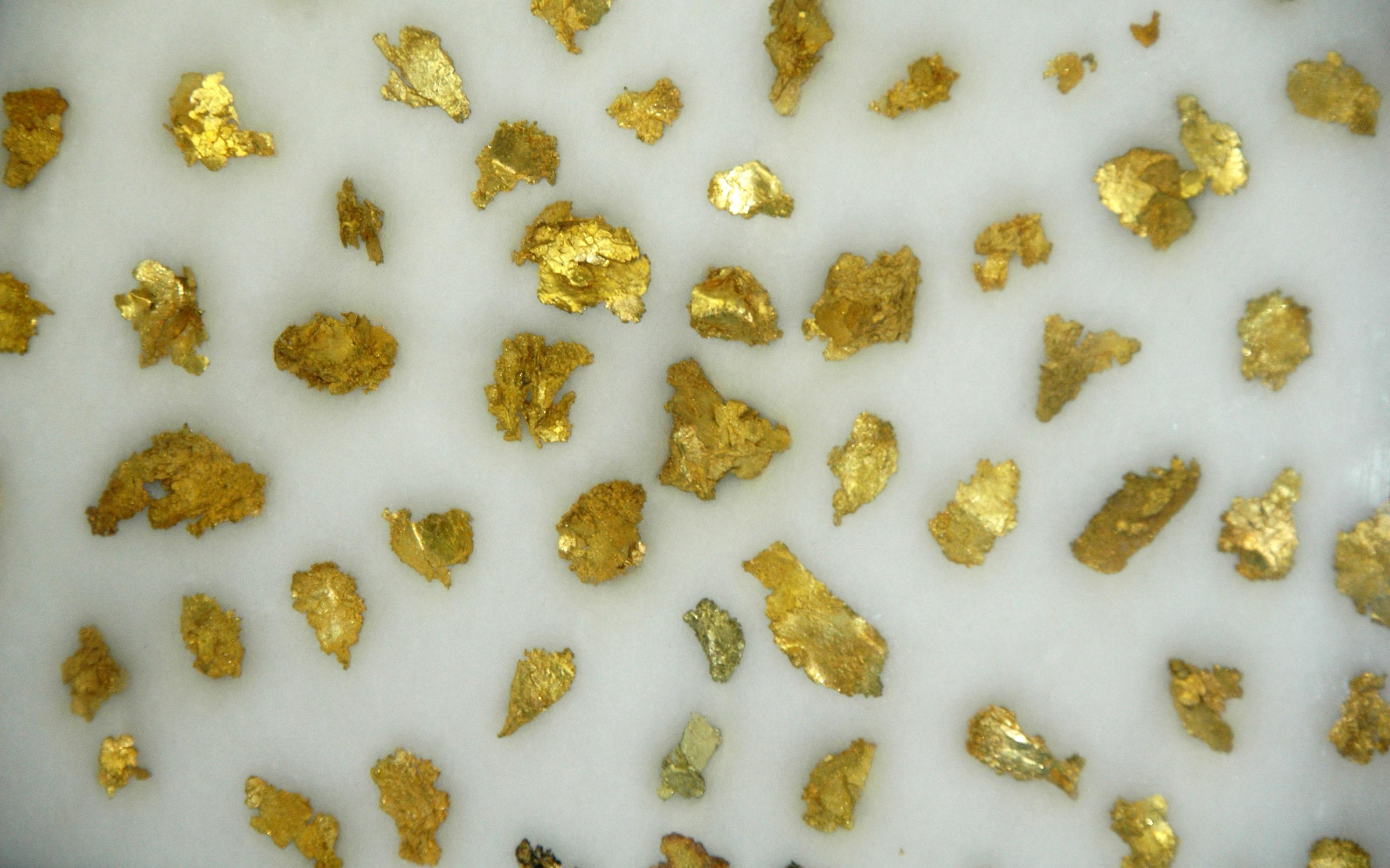 Gold Leaf Properties Clayton Nc