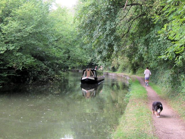 Grand Union Canal, South of Bridge No 135 - geograph.org.uk - 1514871
