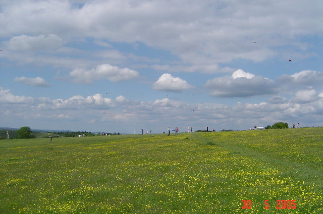 Kite flying on Dunstable Downs - geograph.org.uk - 72418