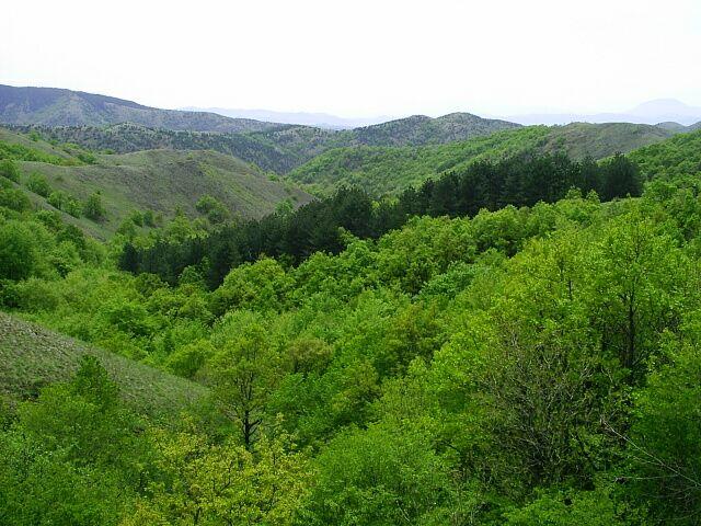 Ravna Gora Srbija Wikipedia