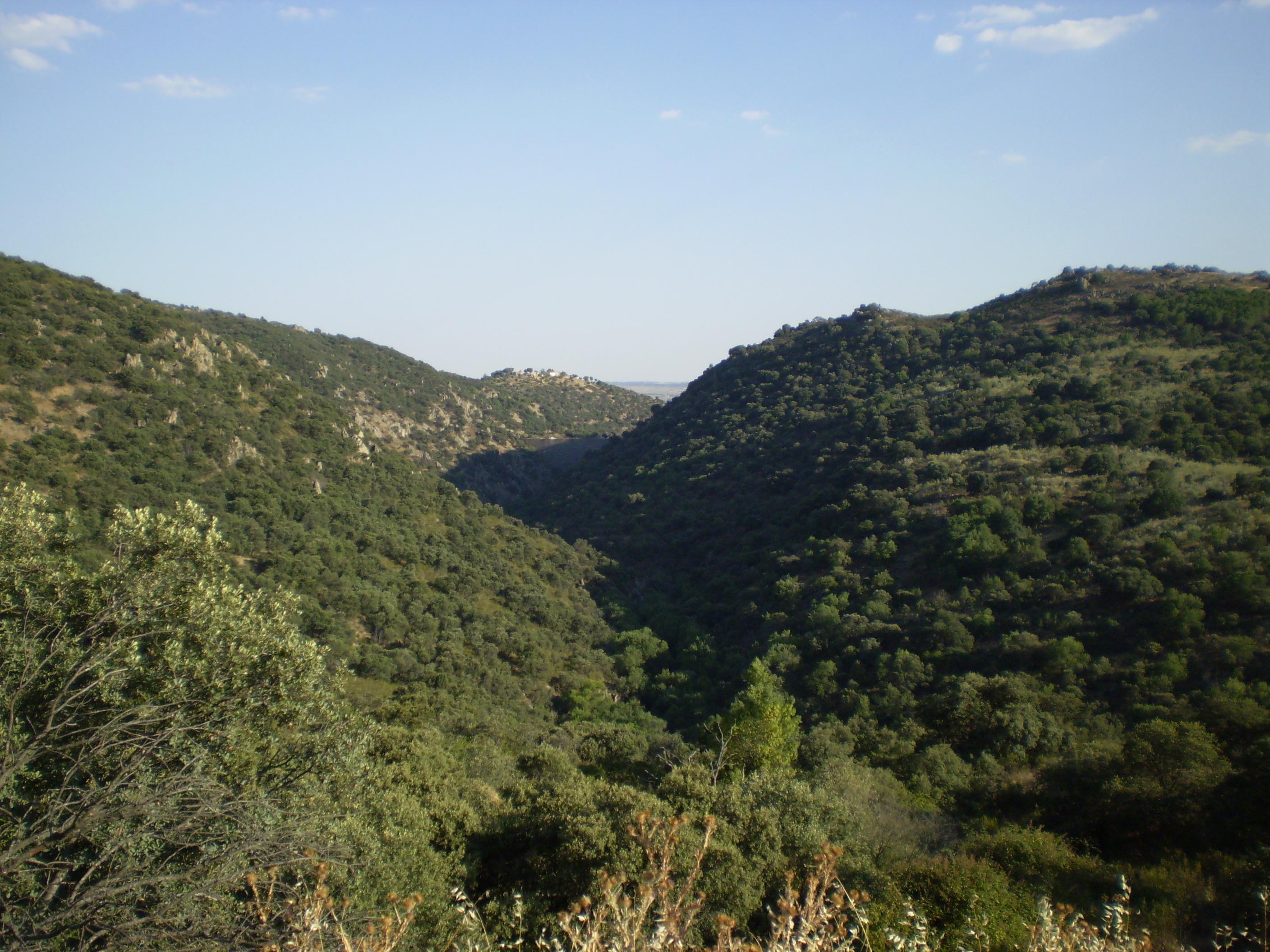 Description Monte de E...