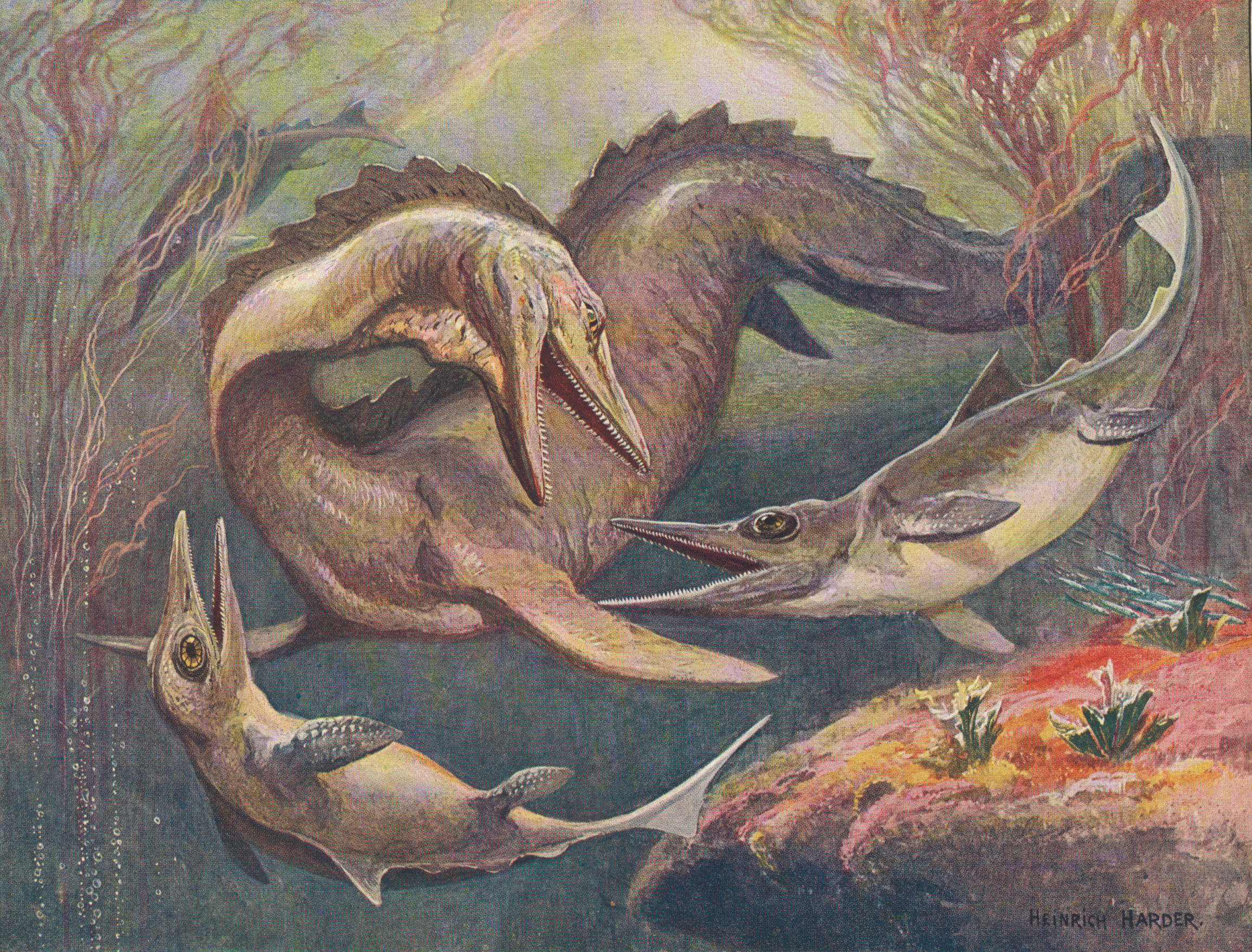 Fossil Painting Art