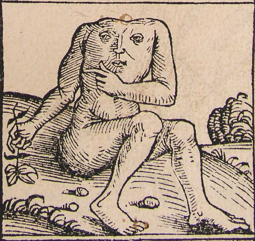 http://upload.wikimedia.org/wikipedia/commons/2/22/Nuremberg_chronicles_-_Strange_People_-_Headless_(XIIr).jpg