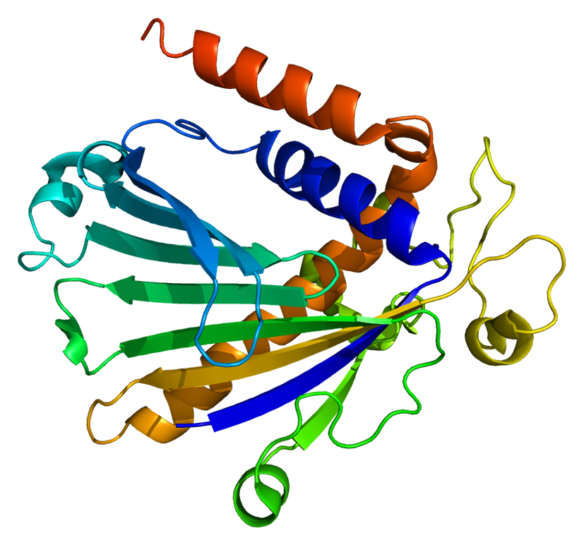 Phosphatidylinositol Transfer Protein, Alpha