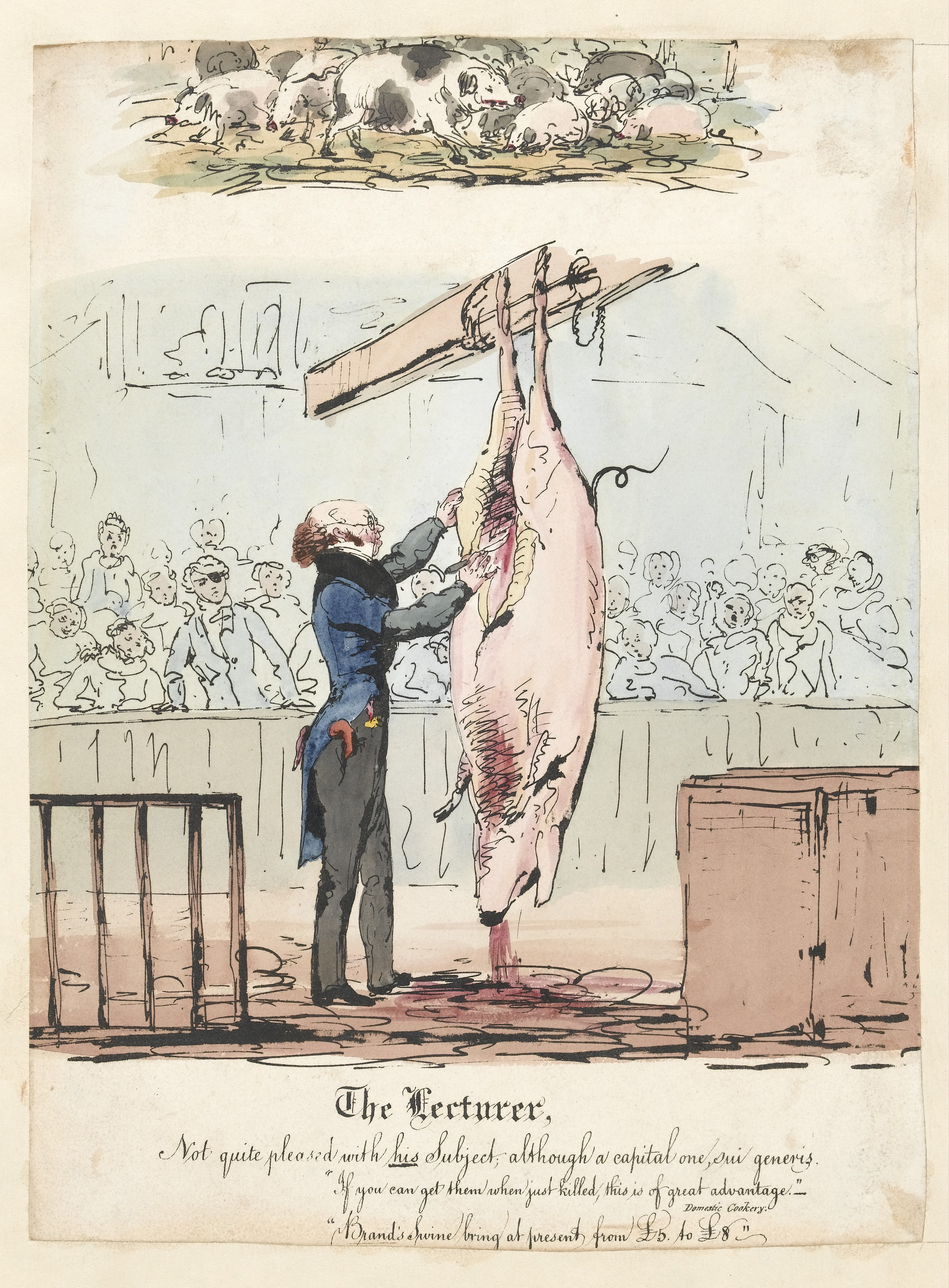 File:Robert Knox lecturing on the anatomy of the pig. Wellcome ...