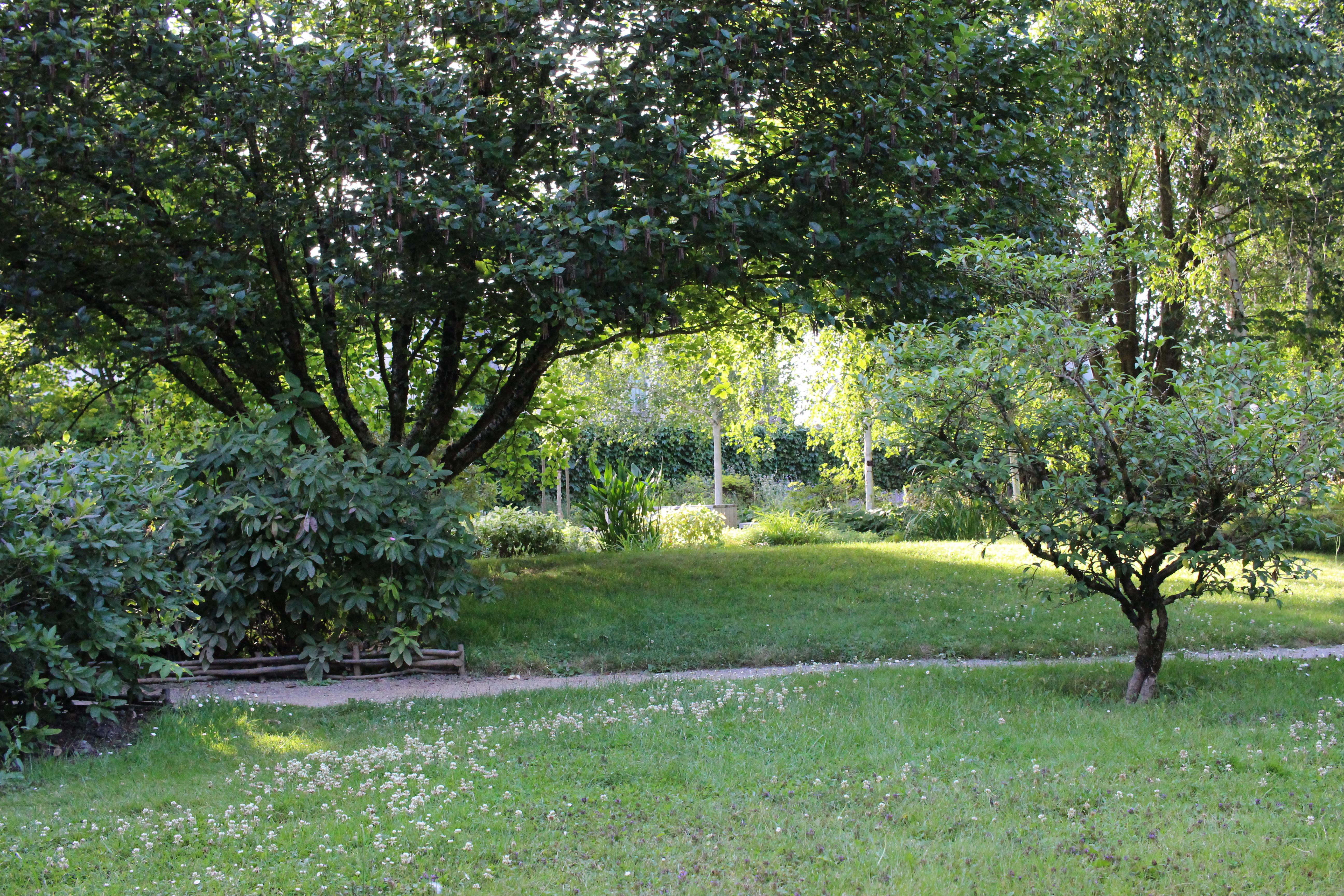 File Tours Allée Jardin Botanique 03 Wikimedia mons