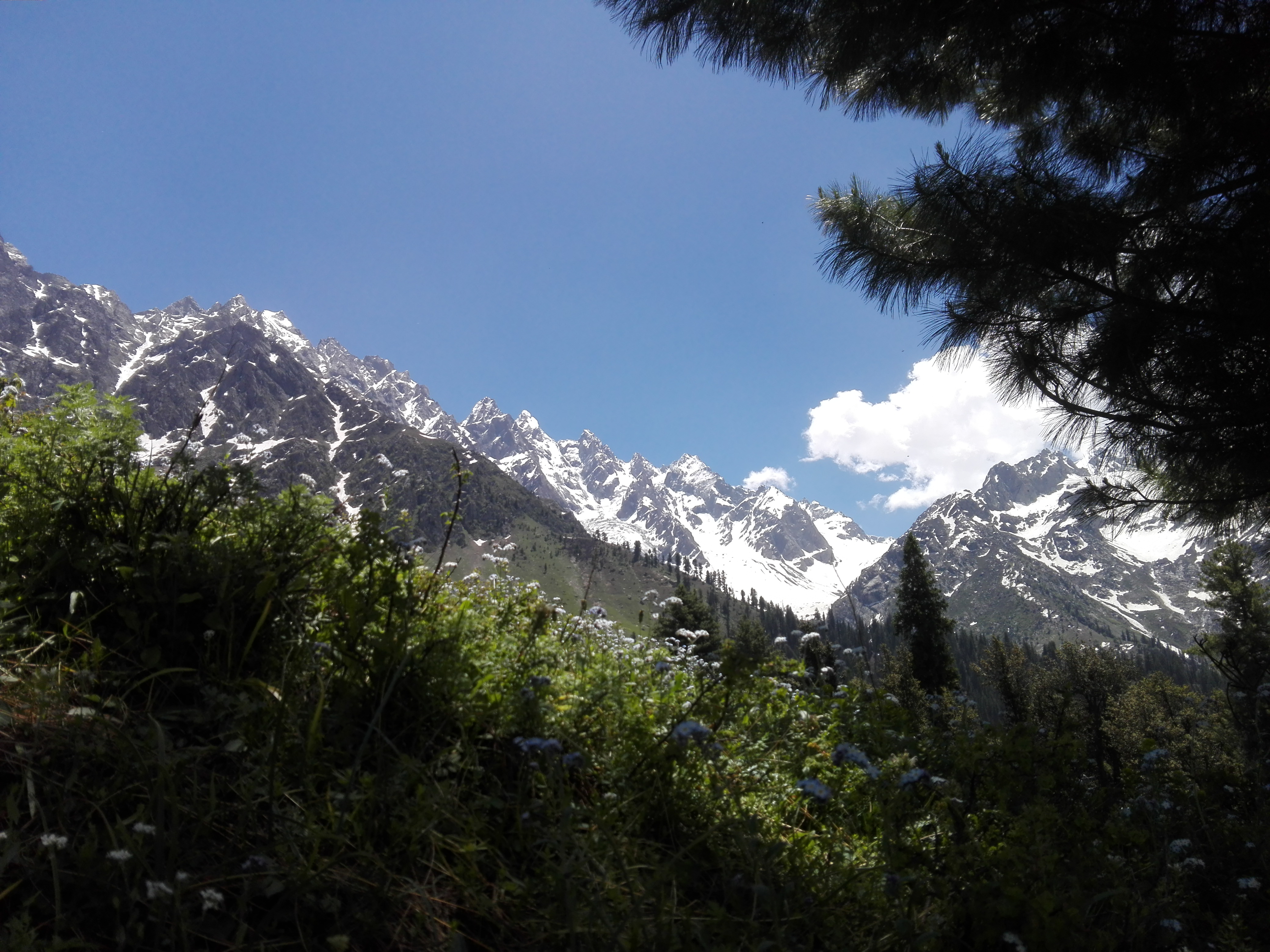 File:Ushu Glaciers of Swat, Kalam, Pakistan.jpg
