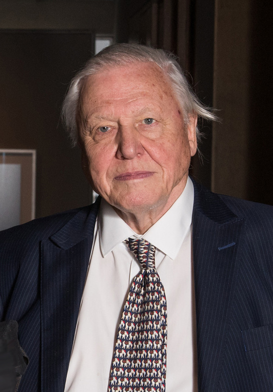 Attenborough at the opening of the [[Weston Library]] in March 2015