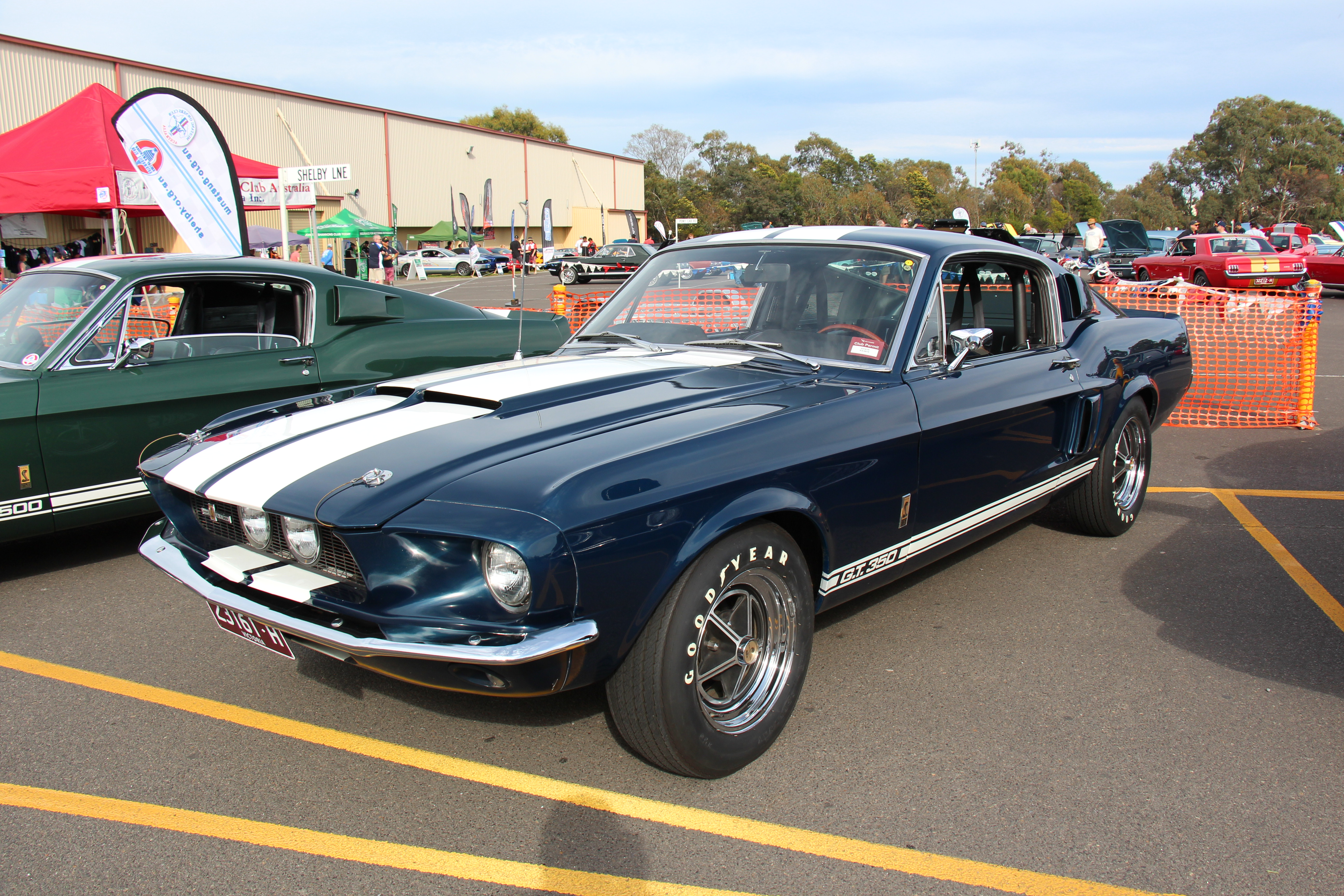 file 1967 shelby mustang gt350 fastback 15393880829 jpg wikimedia commons. Black Bedroom Furniture Sets. Home Design Ideas