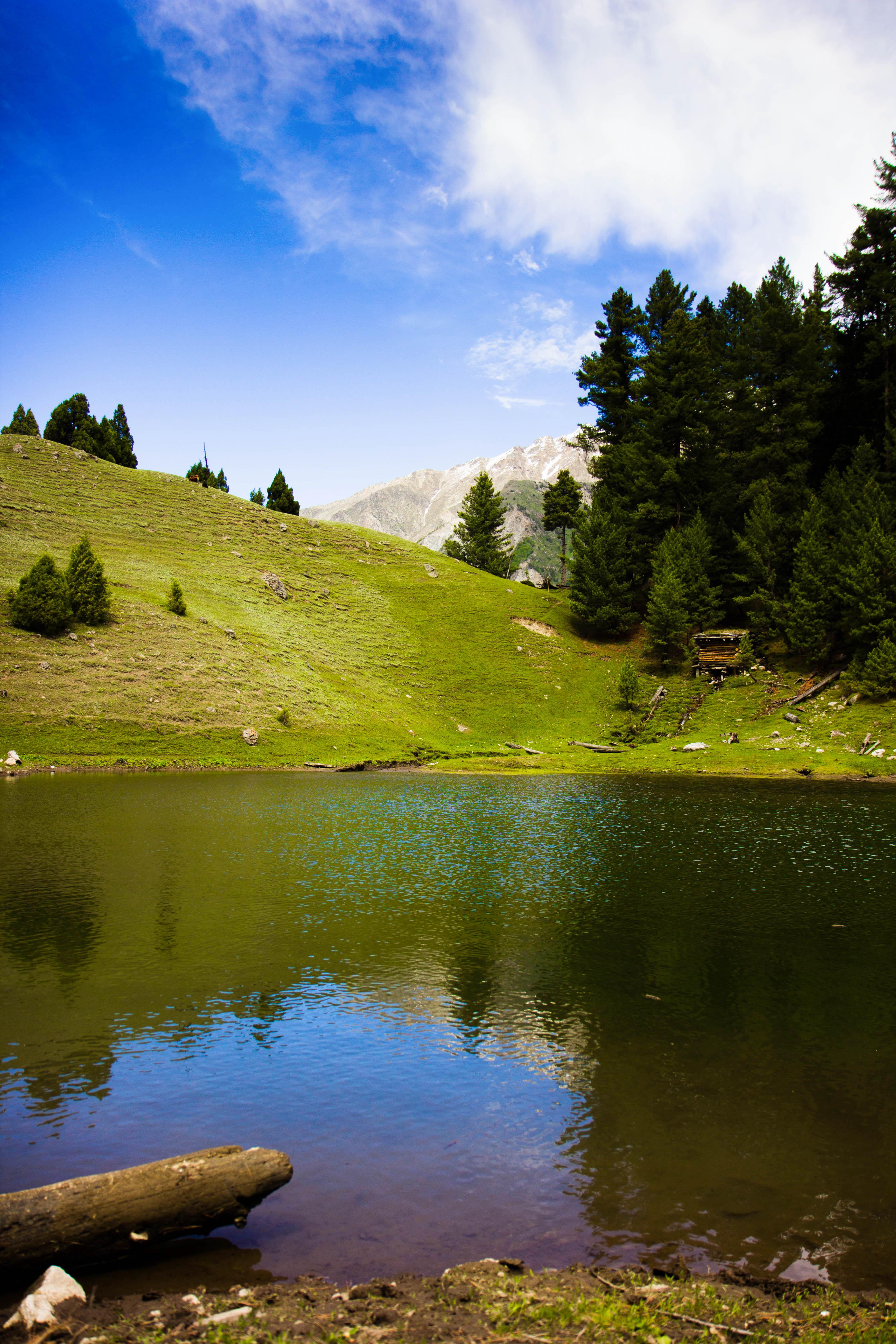 fairy meadows beautiful - photo #17