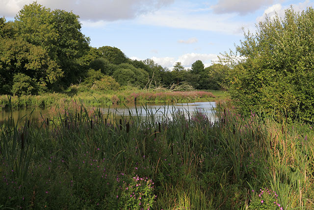 Avington Lake - geograph.org.uk - 227845