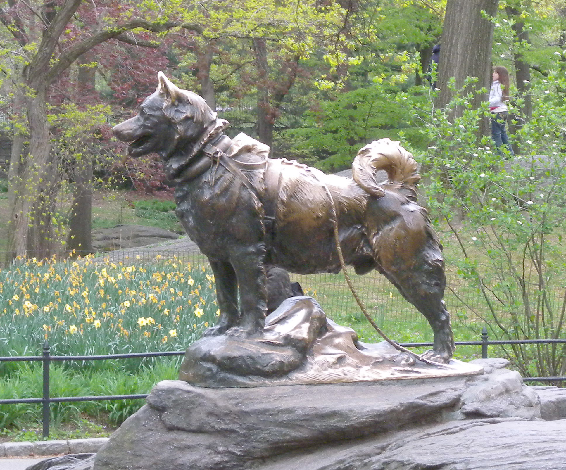 Statue Of Balto The Dog Central Park