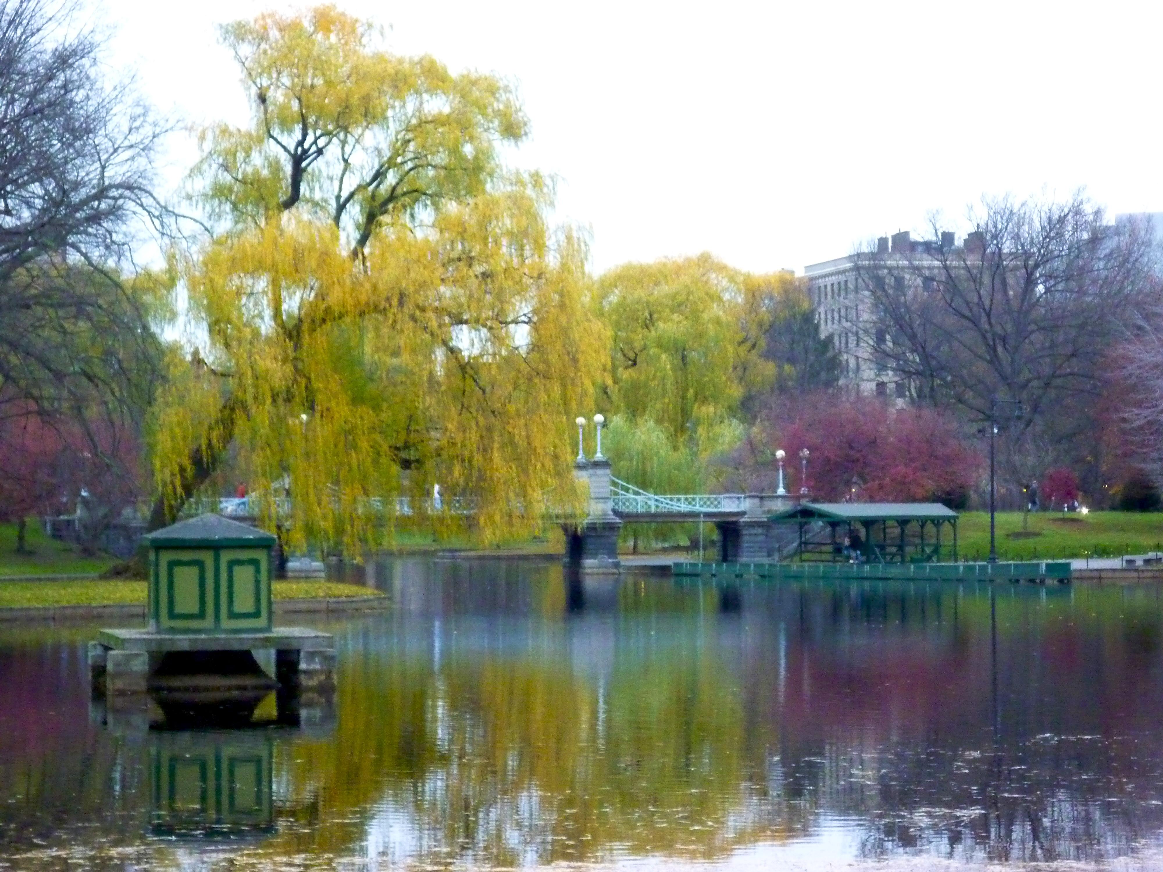 File Boston Public Garden 4236208386 Jpg Wikimedia Commons