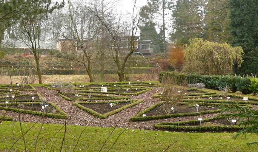 Botanischer schulgarten burg wikidata for Jardines pequenos para escuelas