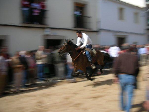 سلسله عالم المعرفه(كل شئ عن الخيول) Carreras_dia_luz_1