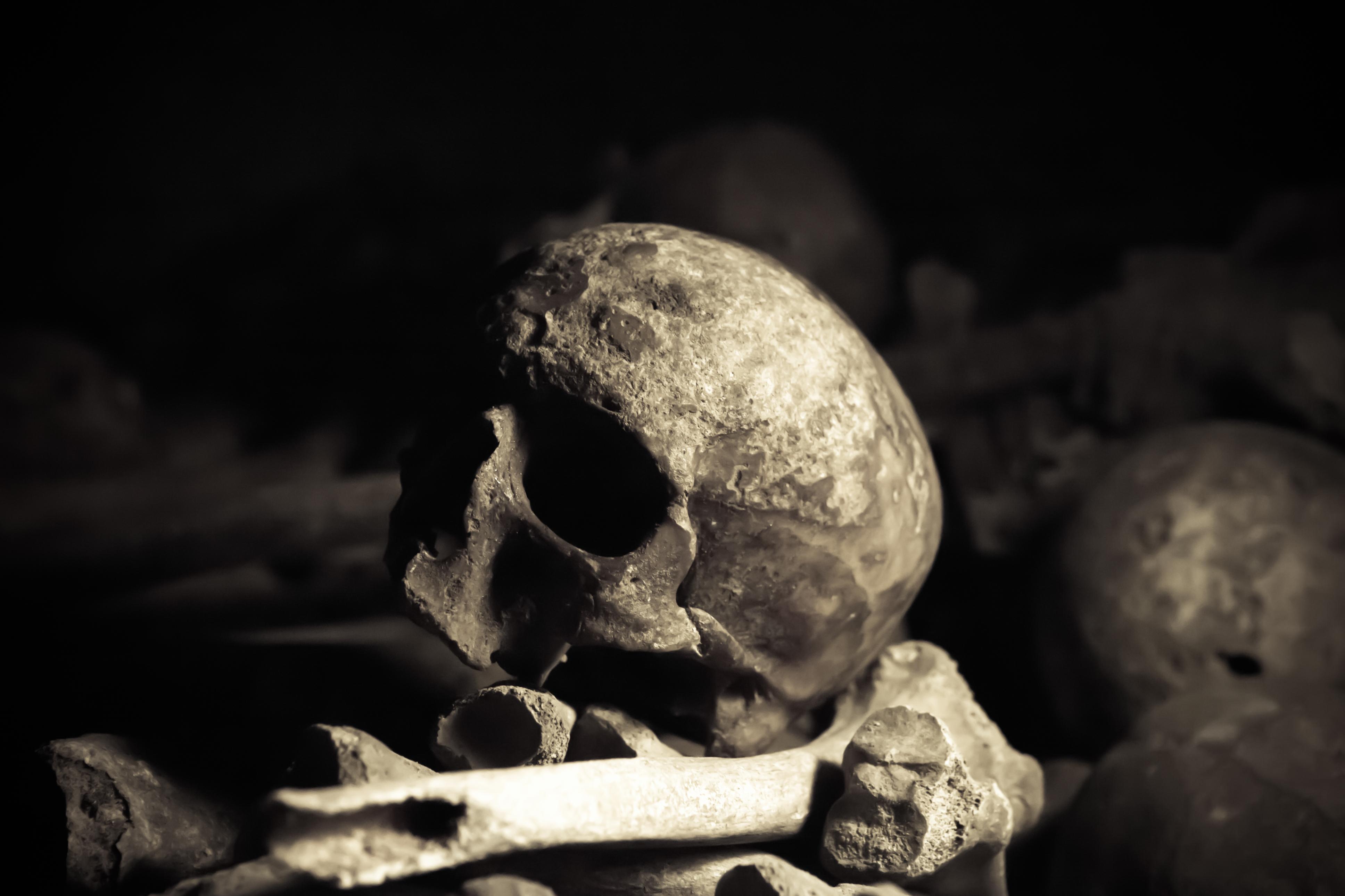 Dans les catacombes de paris - 1 3